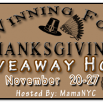 Technogel Pillow Giveaway Winning For Thanksgiving Hop