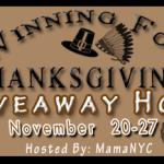 Technogel Pillow Giveaway Winning For Thanksgiving Hop