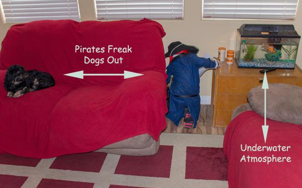 Pirate Treasure Hunt Pirate Party